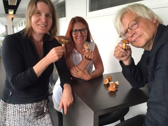Svampkunskap med Nordegren och Epstein i P1 Sveriges Radio (Foto: Ülkü Holago)